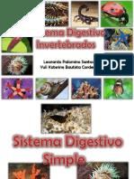presentacininvertebradosprcticahd-130417130831-phpapp01