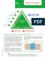 NATURALES_10_MODULO_1.pdf