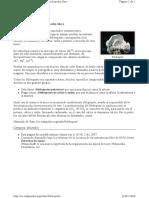 Feldespato.pdf