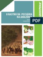 Artigo Amazônia Greenpeace 2.pdf