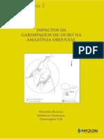 IMPACTOS DA GARIMPAGEM DE OURO NA AMAZÔNIA ORIENTAL