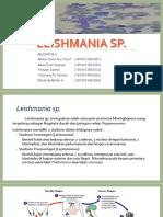 Leishmania Sp