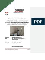 Dictamen pericial10122018