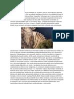 Presas de Arco.pdf
