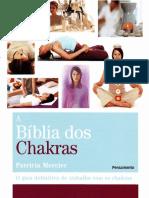 Resumo a Biblia Dos Chakras Patricia Mercier