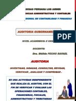 AUD. GUBERNAMENTAL (1) (1)