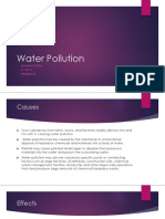 Water Pollution EVS Assignment