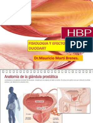 Hbp Fisiologia Y Efectos Del Duodart Dr Mauricio Marti Brenes Andrologia Prostata