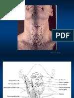 3_ Lezione Tiroide 2_ Parte