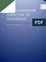 Plan Integral de Seguridad - 2019