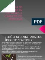 fertilidad delos suelos, exposición química FIEE UNI