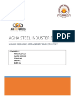 Agha Steel Human Resources 2017.pdf