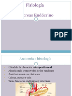04 Pancreas Endocrino - Regulacion Del Metabolismo Energetico(1)