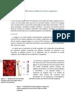 Observação das diferentes células do tecido sanguíneo.rtf