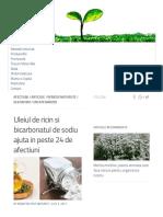 Uleiul de Ricin Si Bicarbonatul de Sodiu Ajuta in Peste 24 de Afectiuni - Sfat Naturist