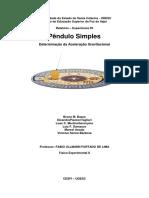 Relatório 04 de Fisica Experimental II 09 10 - Finalizando