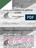 4.Pena (1).ppt