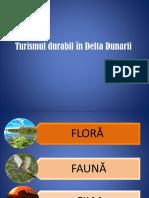 turism_delta.pptx