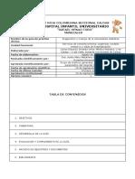 cetoacidosis diabetica diagnostico y manejo guia oficial.pdf