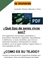Las moneras.pdf