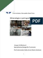 vdocuments.mx_mineralogie-si-petrografie.pdf