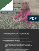 Manejo Agronomico Arandano UNASAM 2018.pdf