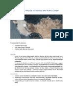 Informe Punta Coles