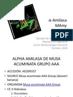 Ejemplo Tarea Α-Amilasa