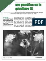 El Colmenar-N97-ENERO-MARZO 2010-La mejora gen+®tica en la apicultura (I)-8p
