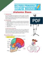 Sistema-Óseo-para-Niños-para-Cuarto-de-Primaria.pdf