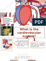 cardiovascular-system-1.pptx