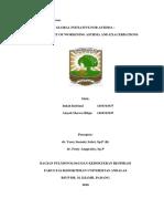 CSS GINA-1.docx