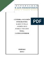 CANINO MAXILAR.docx