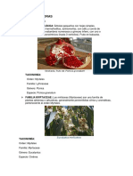 Mirtifloras_ Botanica II