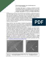Diatomaceas.pdf