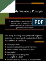 Hardy Weinberg.ppt