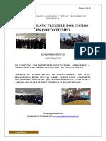 GUIA CASTELLANO - Copia (2) (1) (1) (1)-Convertido