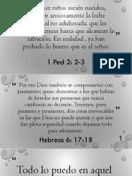 Citas Bíblicas Lema y Memorización