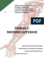 Anatomía Unidad 1 - Miembro Superior