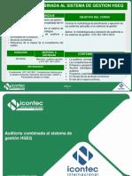 Auditorias Combinadas .pdf