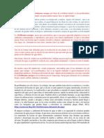Informacion Del Jacinto de Varias Furntes