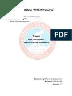 MAPA CONCEPTUAL TERAPIA ESTRUCTURAL SISTEMICA GRUPAL.docx