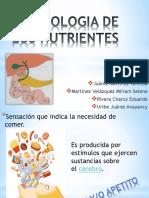 Fisiología de los nutrientes