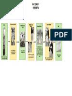 DIAGRAMA SAPONIFICACION.pdf