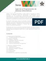 MetodologiadelProgramador1