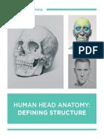 01 Human Head Anatomy Defining Structure