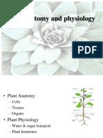 Plant anatomy.ppt