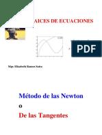 RAICES DE ECUACIONES  MINAS parte 2.ppt