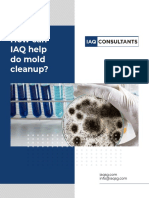 How can IAQ help do mold cleanup?