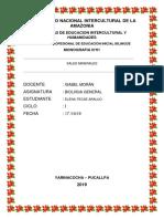 Monografia de Sales Minerales